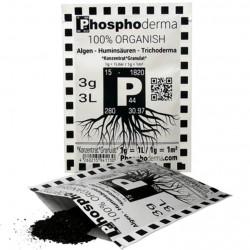 Phosphoderma 3 gr.