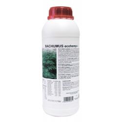 Bachumus Ecohemp C | Trabe