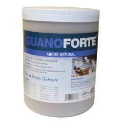 Guanoforte · Trabe