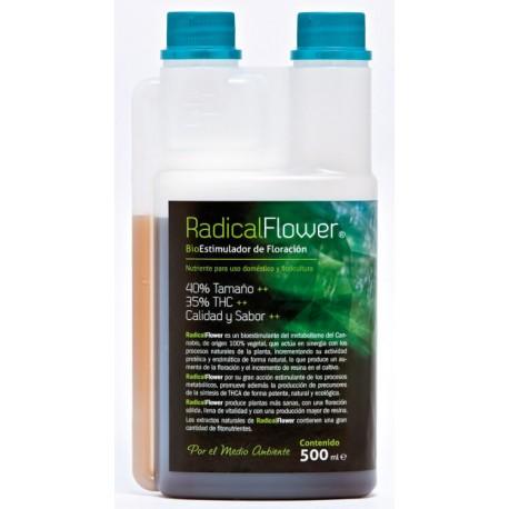 Radical Flower | Trabe