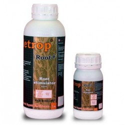 Root+   Metrop