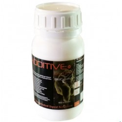 Enzymes | Metrop