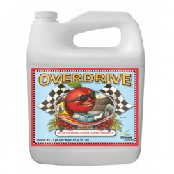 Overdrive Garrafa · Advanced Nutrients