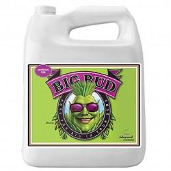 Big Bud Liquid Garrafa | Advanced Nutrients