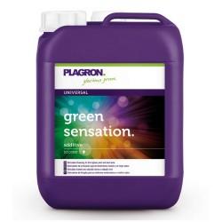 Green Sensation Garrafa · Plagron